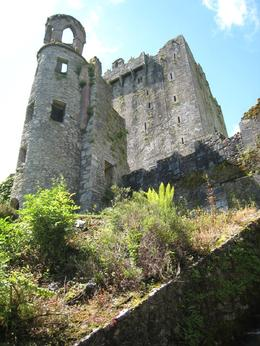 Even though it's known for the Blarney Stone, this castle was a fun experience because it's such a massive castle with great views and spectacular gardens. We really got a chance to take our time ...  - June 2009