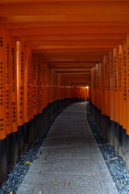 Torii gates at the Fushimi Inari Shrine , Mrs. Ty - December 2011
