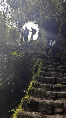 Photo of Cusco The Inca Trail: 4-Day Trek to Machu Picchu Narrow stairwell originally made by the inca's