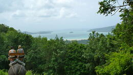 Photo of Phuket Phuket Half-Day Safari Tour Phi Phi