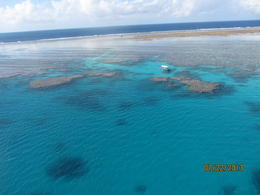 Photo of Cairns & the Tropical North Great Barrier Reef Scenic Helicopter Tour and Cruise from Cairns survol