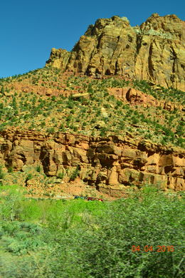 Driving through Zion , Leticia S - May 2016