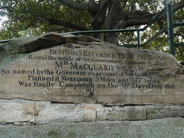 Photo of Sydney Sydney and Bondi Hop-on Hop-off Tour Mrs MacQuarie's Chair