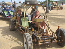 They have 2 seater and 4 seater dune buggys and the were more comfortable than I thought they would be. Cushions are available for seat and back if needed. , Brenda H - December 2010