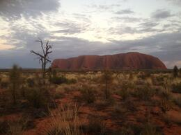 Sunrise Over Ayers Rock and Base Walk with Indigenous Guide - May 2013