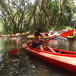 Photo of Kauai Wailua River Kayak and Hike Adventure Wailua River Kayak and Hike Adventure