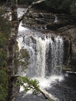 Photo of Launceston Cradle Mountain National Park Day Tour from Launceston waterfall
