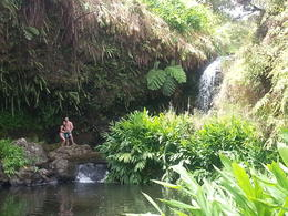 Photo of Big Island of Hawaii Big Island ATV Tour Through Waipio Valley Waterfall Swim Break