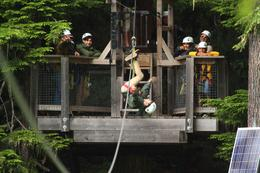 Photo of Whistler Zipline Adventure in Whistler Zipline Adventure in Whistler