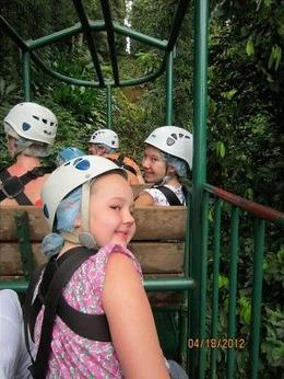 Photo of St Lucia St Lucia Aerial Tram and Zipline Canopy Tour Gondola