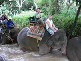 Photo of Bangkok Khao Yai National Park and Elephant Ride Day Trip from Bangkok One by one