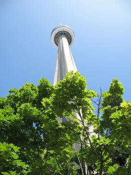 Photo of Toronto Toronto CityPass Toronto CN Tower