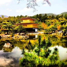 Photo of Kyoto Kyoto Full-Day Sightseeing Tour including Nijo Castle and Kiyomizu Temple Kyoto Full-Day Sightseeing Tour including Nijo Castle and Kiyomizu Temple