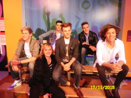 with One direction , Stanka U - December 2015