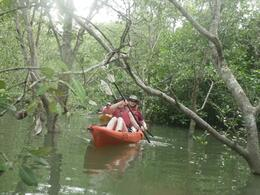 Just one of the tighter spots to kayak - May 2012