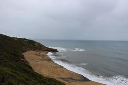 Photo of Melbourne Great Ocean Road Small-Group Eco-Tour from Melbourne Bells Beach
