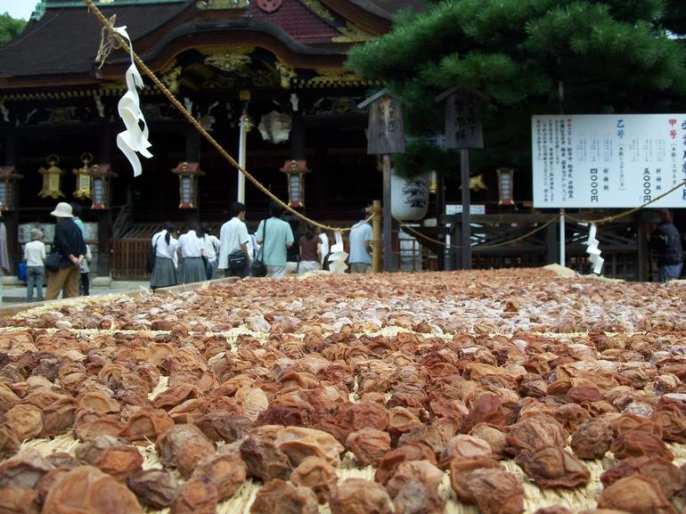 Drying Fruit - Kyoto