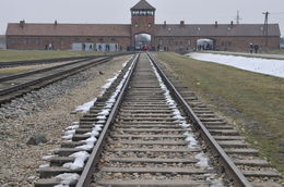 Selection point - Auschwitz , Louise Phillips P - February 2015