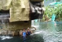 Photo of San Jose Arenal Volcano and Hot Springs Day Trip from San Jose