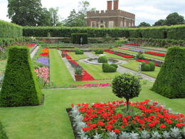 This is just one of the many gardens that surround Hampton Court. The colors were brilliant! , Nancy - June 2014