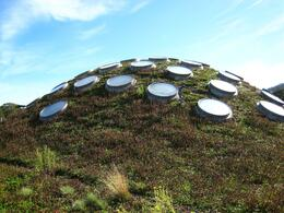 The new eco-engineered living roof. - November 2009