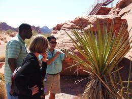 Photo of Las Vegas Valley of Fire Luxury Tour Trekker Excursion Valley of Fire10