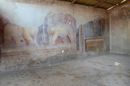 Photo of Rome Rome to Pompeii Shuttle Bus & Independent Day Trip Amazing mosaics and frescoes
