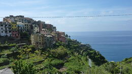 Photo of Florence Cinque Terre Hiking Day Trip from Florence corneglia