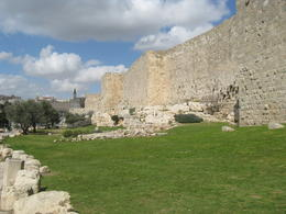 Photo of Tel Aviv Day Tour to Jerusalem and Bethlehem from Tel Aviv Dodder 060