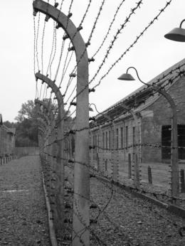 A barbed-wire fence at Auschwitz, Joy R - June 2009