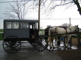Photo of New York City Philadelphia and Amish Country Day Trip from New York A funny ride