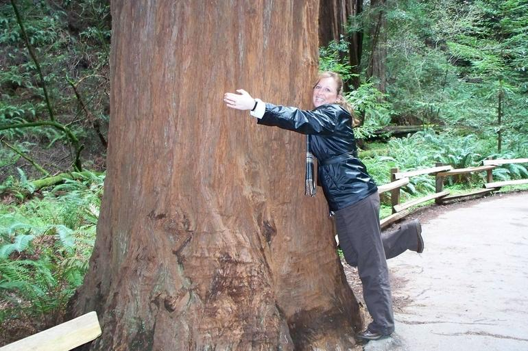Hugging a tree, Muir Woods - San Francisco