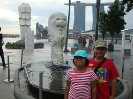 Photo of Singapore Singapore City Tour with optional Singapore Flyer Singapore City Tour