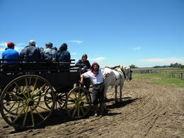 Photo of   Paseo en Carreta con Gaucho