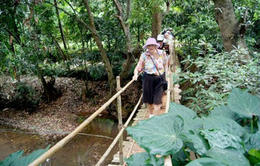 Photo of Goa Private Eco-Tour: Crocodile Watching, Spice Plantation and Elephant Experience in Goa Spice plantation
