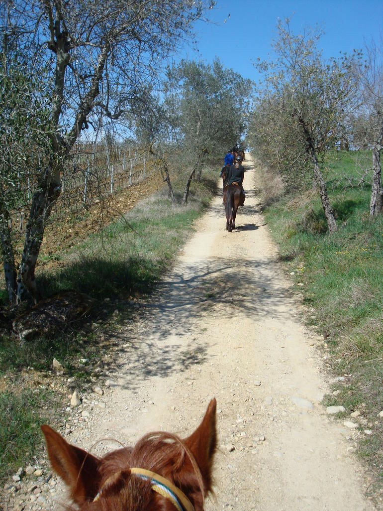 Riding tour in Tuscany - Florence