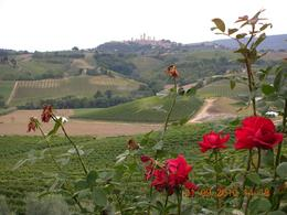 San Gmignano seen from Chiant, JATIN T - October 2010