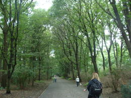Photo of Berlin Berlin Bike Tour Close to nature