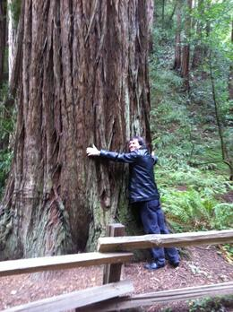 Photo of San Francisco San Francisco Super Saver: Muir Woods and Wine Country Tour Hug a 'Sequoia' tree :-)
