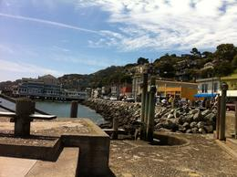 Photo of San Francisco San Francisco Super Saver: City Tour plus Muir Woods and Sausalito Day Trip Sausalito