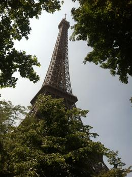Photo of Paris Skip the Line: Eiffel Tower Tickets and Small-Group Tour The Tower - Peeping though the trees