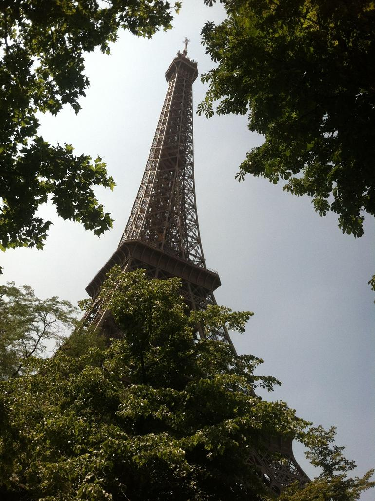 The Tower - Peeping though the trees - Paris