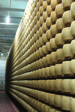 Photo of Siena Emilia Romagna Day Trip: Museo Ferrari with Optional Test Drive, Balsamic Vinegar Tour and Parmigiano-Reggiano Cheese Factory Wheely big cheese room