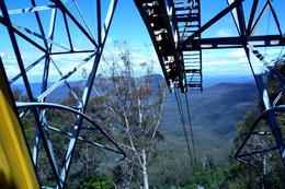 Photo of Sydney Blue Mountains Nature and Wildlife Day Tour from Sydney blue mountain.