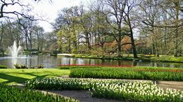 Keukenhof parken , Frantz H - April 2015