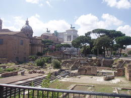 Photo of Rome Ancient Rome Half-Day Walking Tour Roman Forum