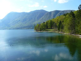 Photo of Slovenia Bled and Bohinj Valley Tour from Ljubljana View across bohinj