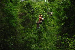 Photo of   Beautiful Mexican rainforests