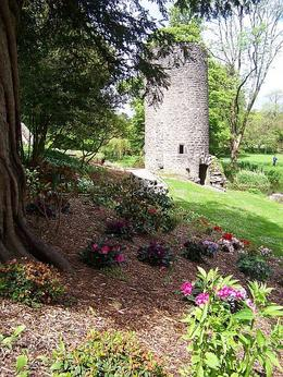 Pretty Spring flowers outside Blarney Castle , Susan G - May 2011
