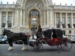 Photo of Paris Romantic Horse and Carriage Ride through Paris Longshot outside palace
